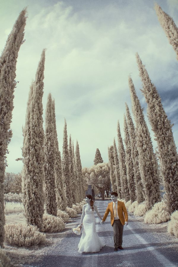pre_wedding_in _tuscany_11.jpg